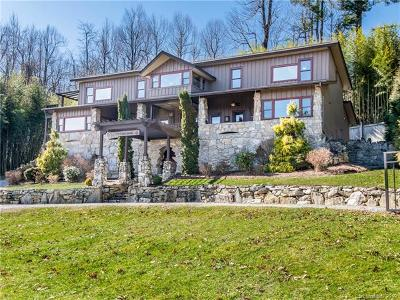 Henderson County Single Family Home For Sale: 253 Indian Cave Park Road