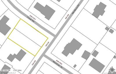 Residential Lots & Land For Sale: 2-Lots Westbury Road