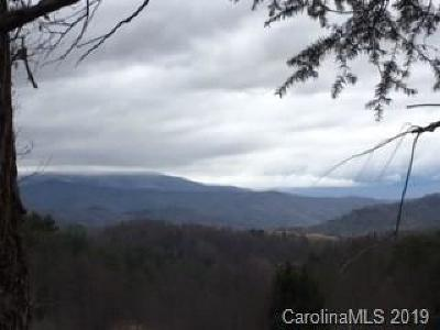 Haywood County Residential Lots & Land For Sale: Lot 1 Panther Creek Road #1