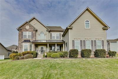 Huntersville Single Family Home For Sale: 15007 Skypark Drive