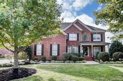 Fort Mill Single Family Home Under Contract-Show: 928 Hickory Stick Drive