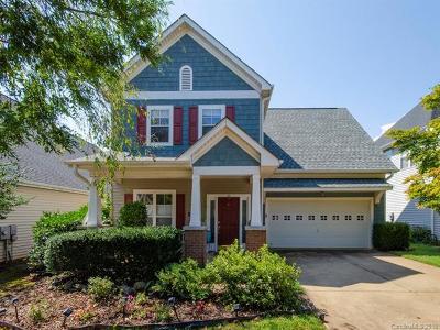 Asheville Single Family Home For Sale: 1410 Kenton Lane