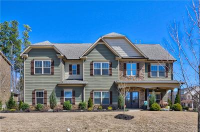 Huntersville Single Family Home For Sale: 13402 Crystal Springs Drive