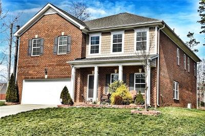 Mint Hill Single Family Home For Sale: 4831 Sela Court