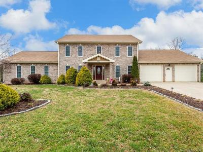 Leicester Single Family Home For Sale: 92 Big Sky Drive