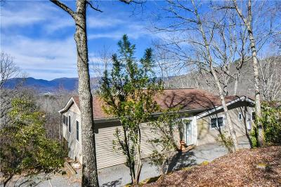Black Mountain Single Family Home For Sale: 1003 Nc Hwy 9 Highway