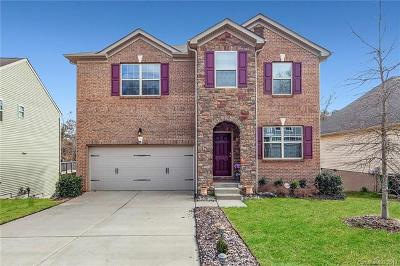 Charlotte Single Family Home For Sale: 10815 Cove Point Drive #12