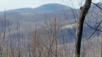 Bat Cave, Black Mountain, Chimney Rock, Columbus, Gerton, Lake Lure, Mill Spring, Rutherfordton, Saluda, Tryon, Union Mills Residential Lots & Land For Sale: E Shumont Road E