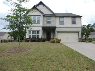 Mint Hill Single Family Home For Sale: 15229 Kissimmee Lane #59
