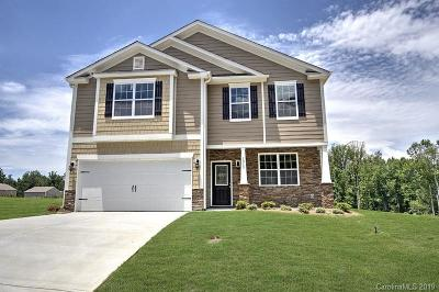 Concord Single Family Home For Sale: 3224 Hawksbill Street SW #Lot 11