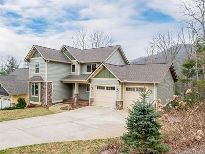 Fairview Single Family Home For Sale: 12 Old Bridge Circle