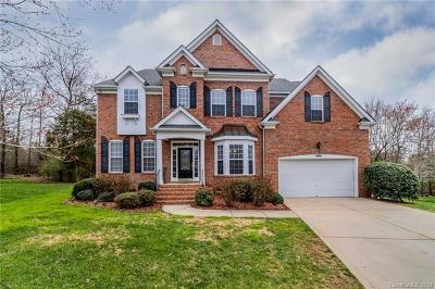Fort Mill Single Family Home For Sale: 107 Lennon Drive