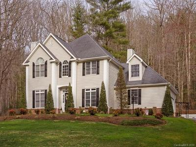 Hendersonville Single Family Home For Sale: 42 Squirrel Trail