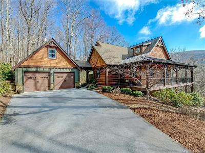 Hendersonville Single Family Home For Sale: 359 Thunder Mountain Road