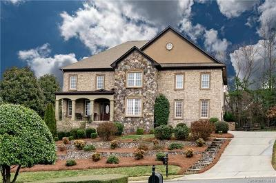 Charlotte Single Family Home For Sale: 6909 Dowington Drive