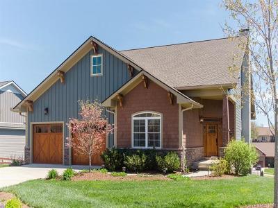 Mills River Single Family Home For Sale: 105 Birchbark Drive