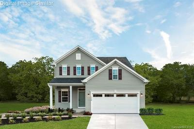Concord Single Family Home For Sale: 1520 Van Buren Avenue SW #699