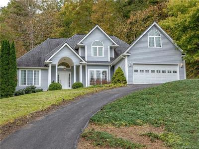 Asheville Single Family Home For Sale: 306 Golden Hawk Trail