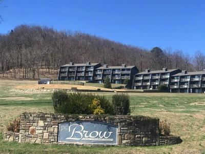 Bat Cave, Chimney Rock, Columbus, Gerton, Lake Lure, Mill Spring, Rutherfordton, Saluda, Tryon, Union Mills Condo/Townhouse For Sale: 2881 White Oak Mountain Road #A10
