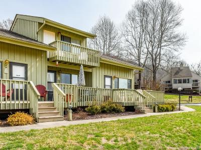 Bat Cave, Chimney Rock, Columbus, Gerton, Lake Lure, Mill Spring, Rutherfordton, Saluda, Tryon, Union Mills Condo/Townhouse For Sale: 177 West Lake Drive N #604