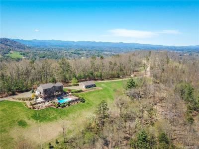 Weaverville Single Family Home For Sale: 83 Cozy Mountain Lane