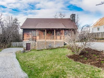 Asheville Single Family Home For Sale: 16 Oakview Road