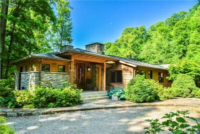 Weaverville Single Family Home For Sale: 202 Cook Cove Road
