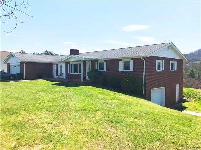 Leicester Single Family Home For Sale: 320 Goughes Branch Road