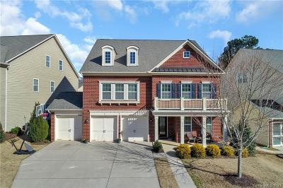 Tega Cay Single Family Home Under Contract-Show: 3065 Amaranth Drive