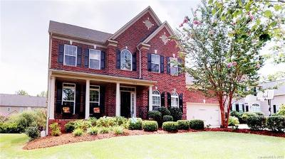 Charlotte Single Family Home For Sale: 10214 Benderloch Drive