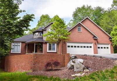 Hendersonville Single Family Home For Sale: 221 Burge Mountain Road