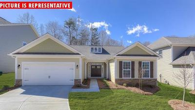 Mooresville Single Family Home For Sale: 132 Coddle Way #229