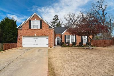 Charlotte Single Family Home For Sale: 11214 Golden Drive