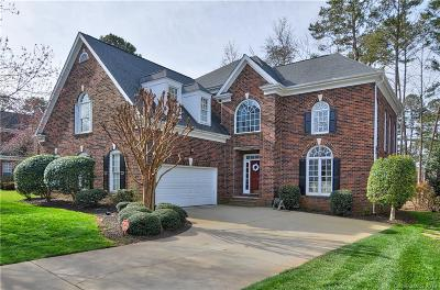 Davidson Single Family Home For Sale: 18517 Dembridge Drive
