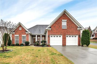 Fort Mill Single Family Home For Sale: 716 Ravenglass Drive