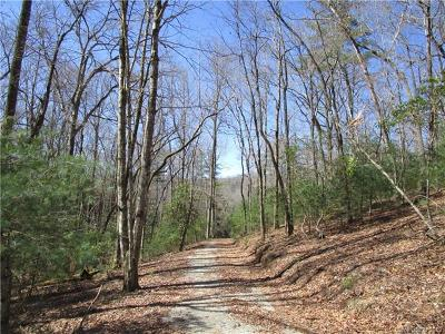 Mills River Residential Lots & Land For Sale: 999 Fern Hollow Road #5