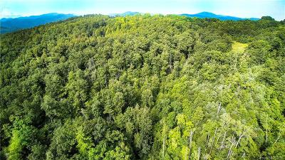 Buncombe County, Haywood County, Henderson County, Madison County Residential Lots & Land For Sale: 12165 Us 25/70 Highway