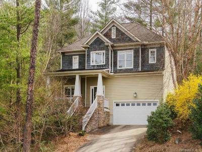 Asheville Single Family Home For Sale: 37 White Ash Drive