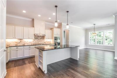 Mint Hill Single Family Home For Sale: 4419 Patriots Hill Road #369