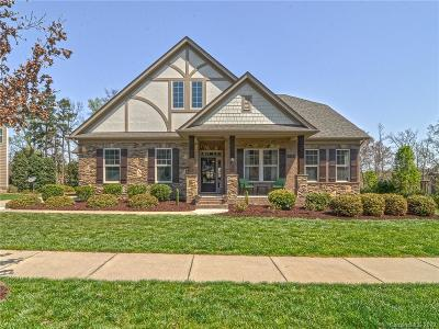 Huntersville Single Family Home Under Contract-Show: 14223 Salem Ridge Road