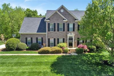 Fort Mill Single Family Home Under Contract-Show: 127 Doby Creek Court