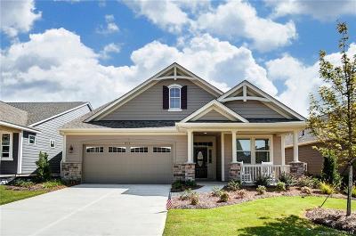 Tega Cay Single Family Home For Sale: 1513 Liberty Row Drive #91