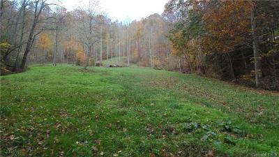 Buncombe County, Haywood County, Henderson County, Madison County Residential Lots & Land For Sale: 1044 Heck Creek Road