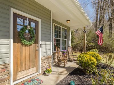 Hendersonville Single Family Home For Sale: 22 Streamside Drive
