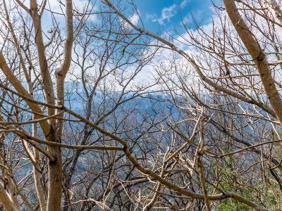Asheville Residential Lots & Land For Sale: 175 Senator Reynolds Road #23