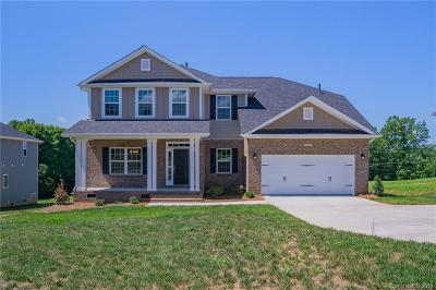 Statesville Single Family Home For Sale: 119 Fox Tail Court #39
