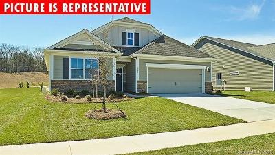 Mooresville Single Family Home For Sale: 110 E Cup Chase Drive #253