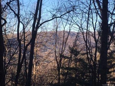 Asheville Residential Lots & Land For Sale: 99999 Patton Mountain Road