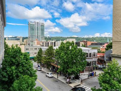 Asheville NC Condo/Townhouse For Sale: $1,100,000