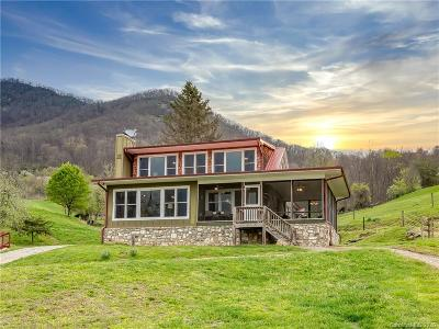 Canton Single Family Home For Sale: 390 Grandview Road